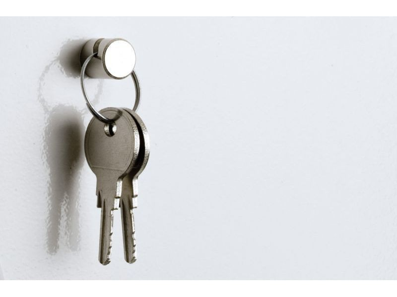 Deco Magnet with Hook - Ø 12 mm - Neodymium (Rare Earth) Nickel - holds 5,5 kg